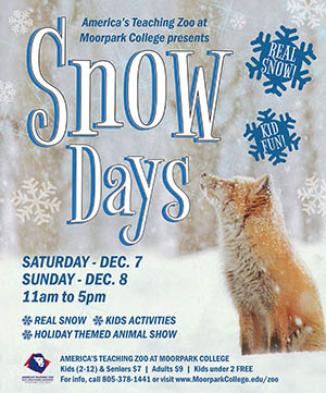 flyer for the Snow Days event showing a fox in the snow