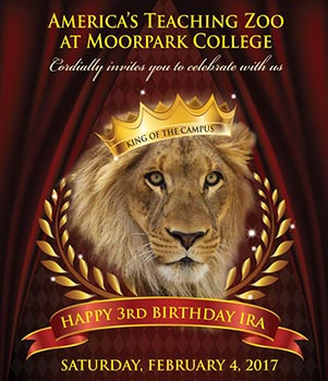image of flyer for Ira's 3rd Birthday Celebration