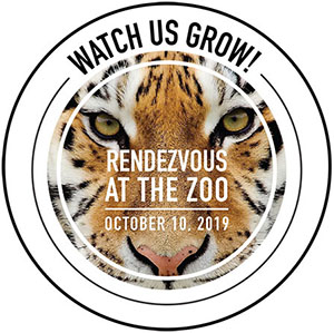 Rendezvous at the Zoo, 2019