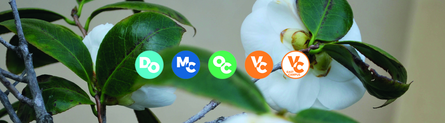 flowers with vcccd logos